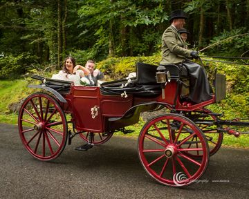 Wedding Carriages