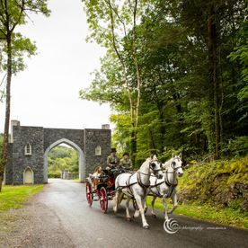 Weddings carriage