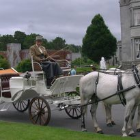 white carriages