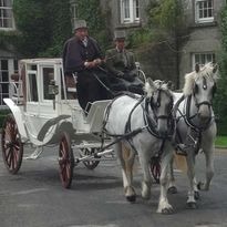 White-wedding-carriage